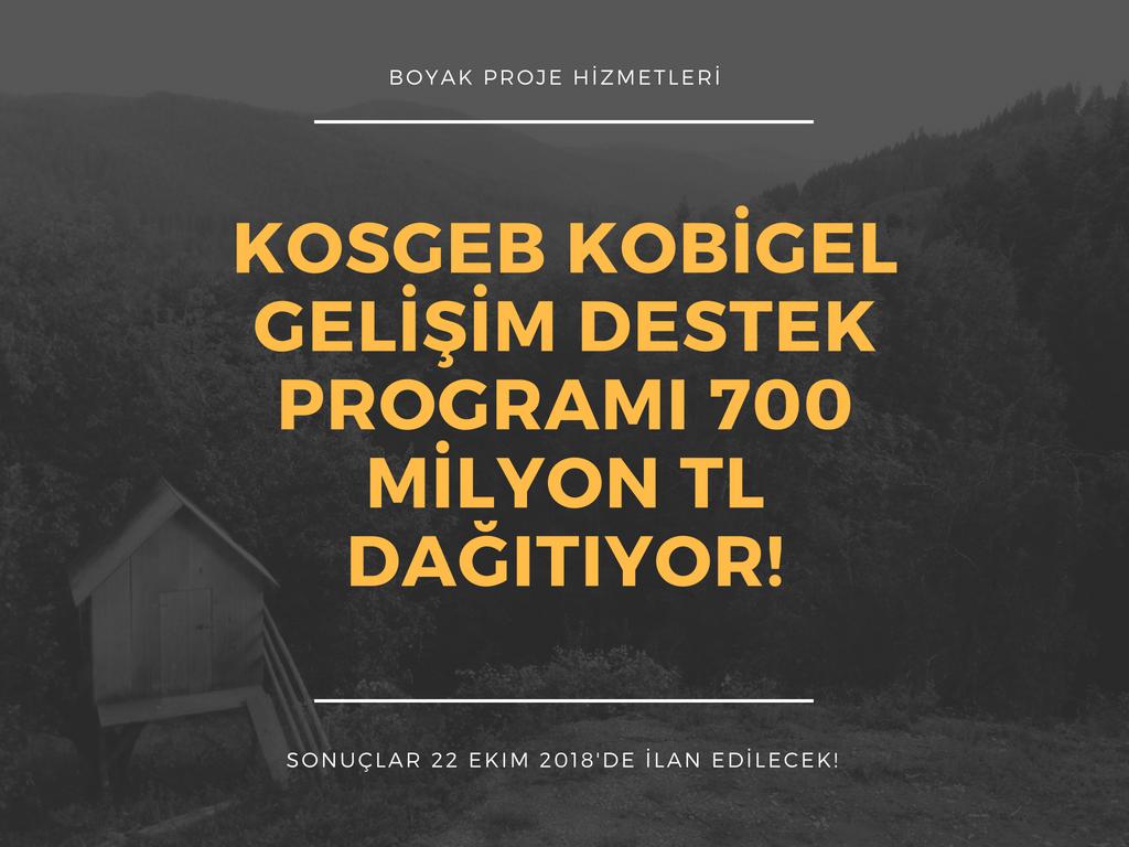 Kosgeb Kobigel - Kobi Gelişim Destek Programı